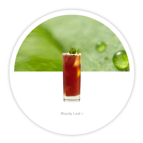 LEAF Vodka Website Refresh